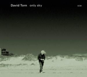 TORN David CD