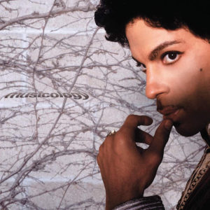 PRINCE Musicology