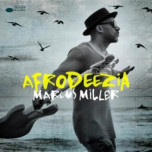 LEAGUE CD 6 Miller