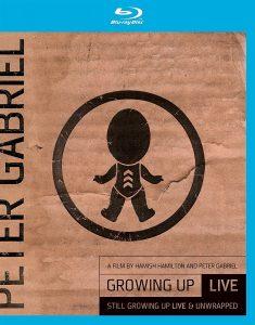 gabriel-blu-ray-dvd