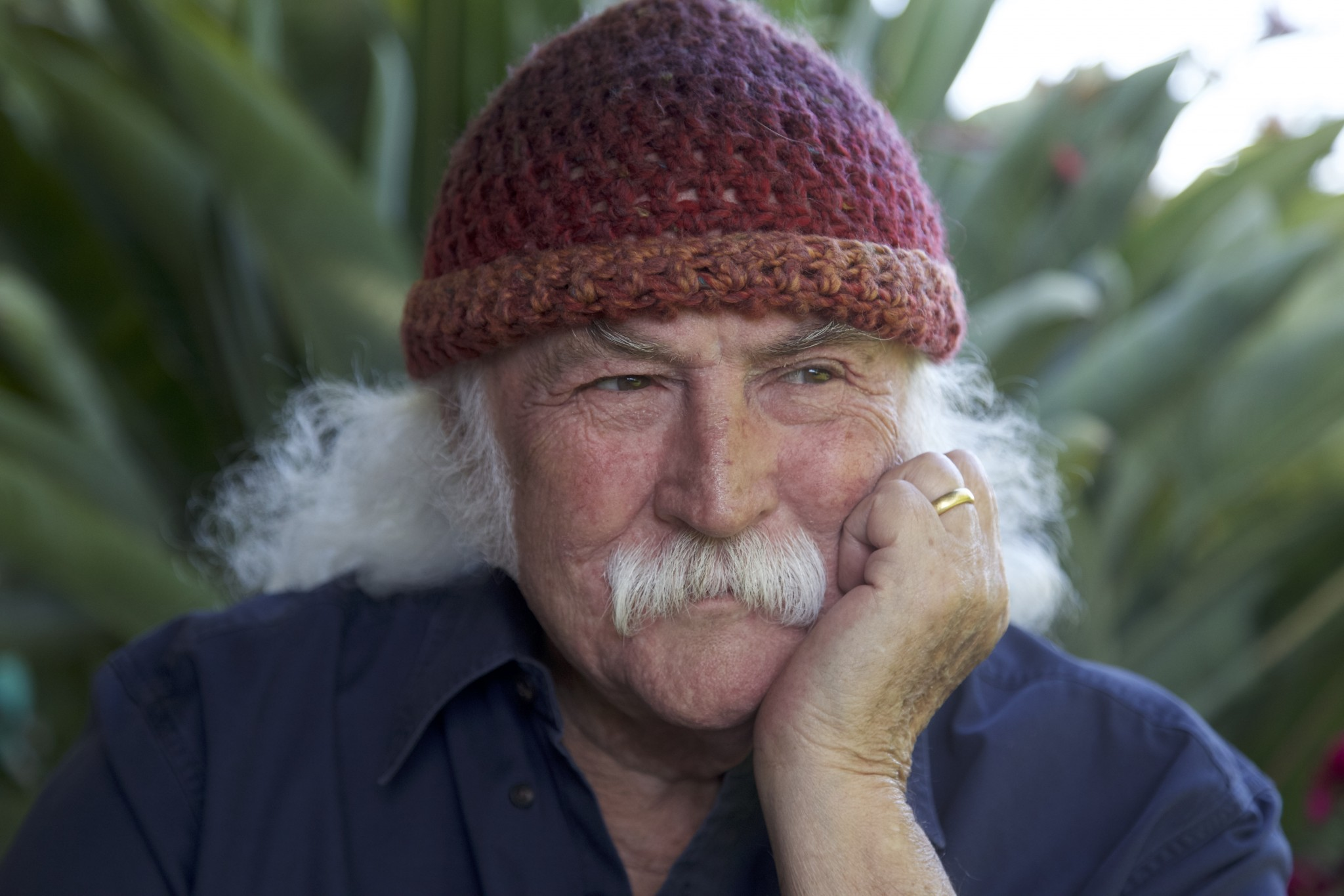 David Crosby_Spring Tour 2017 Press Photo (credit Henry Diltz)