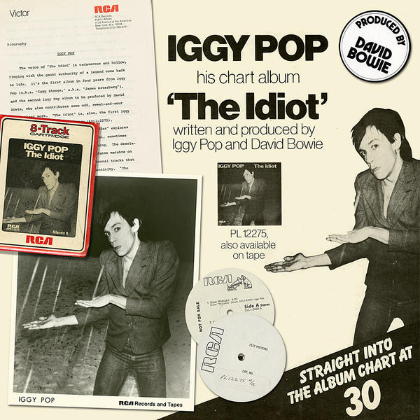 iggy_idiot_40th_mont_1000sq
