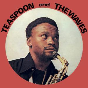 MR. BONGO Teaspoon And The Waves